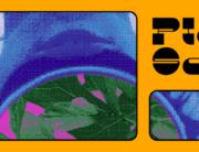 PLEIN SOLEIL Banner page